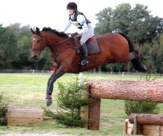 Horse (wammes)competes BE 100 UK